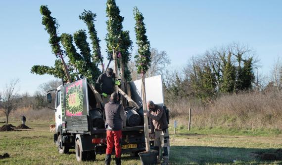 530 arbres plantés sur la Base Nature de Fréjus au bord de la Méditerranée